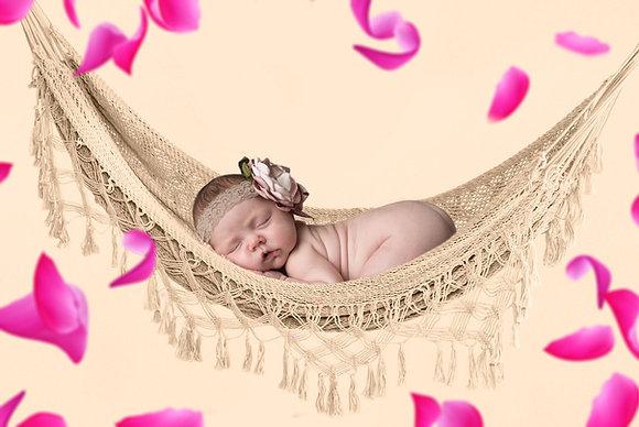 Baby Hammock Backdrop with Rose Petals | Newborn digital background