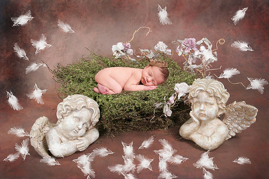 Pretty Newborn Digital Backdrop | Newborn photo props