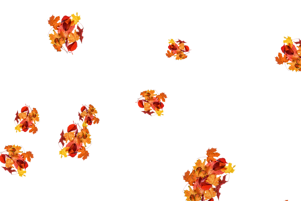 Falling leaves Overlays for Photoshop | Wondrous autumn leaves transparent background