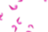 Beautiful Magical Rose Petals | Photo Overlays | Free