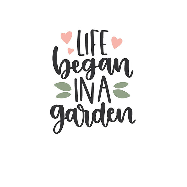 Life began in a garden Png | Free Iron on Transfer Cool Quotes T- Shirt Design in Png