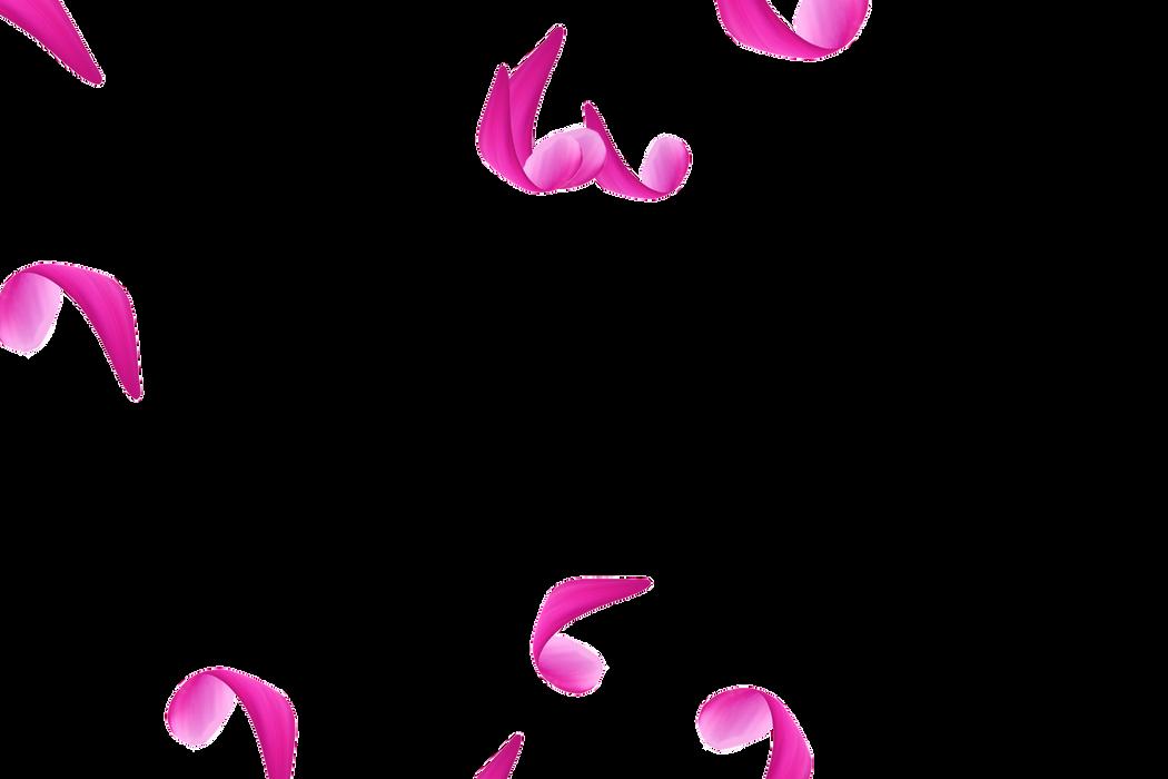 Romantic Newborn Rose Petals | Photo Overlay | Instant download