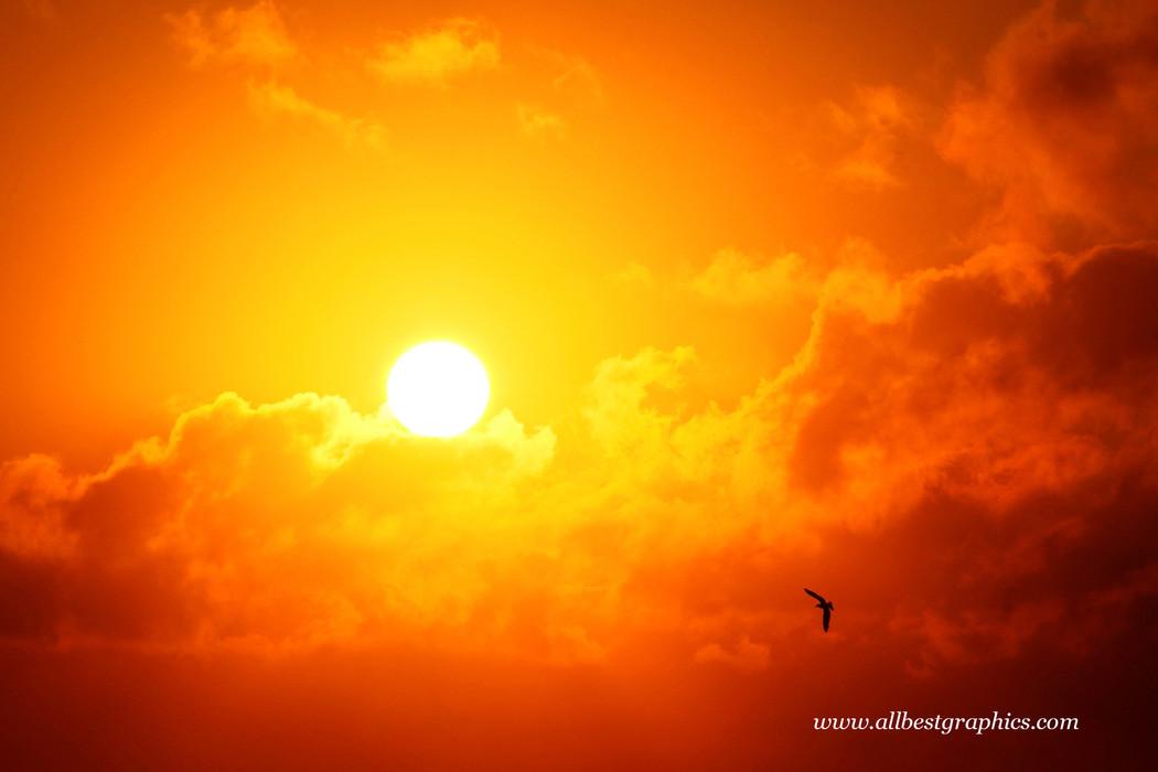 Delightful fluffy sunset sky overlay   Overlays for Photoshop
