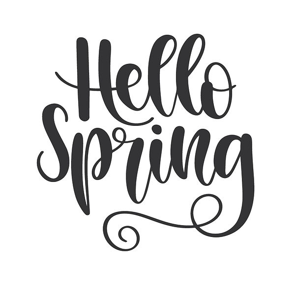 Hello_spring Png | Free Iron on Transfer Slay & Silly Quotes T- Shirt Design in Png