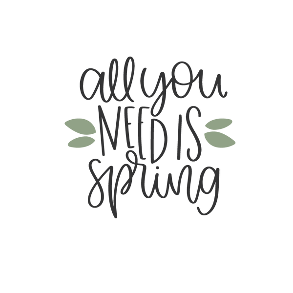 All you need is spring   Free Iron on Transfer Slay & Silly Quotes T- Shirt Design in Png