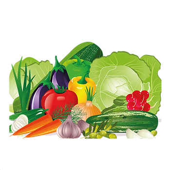 Cabbage Carrot  & Cauliflower | Food clip art free download -size 2400x2400 300ppi