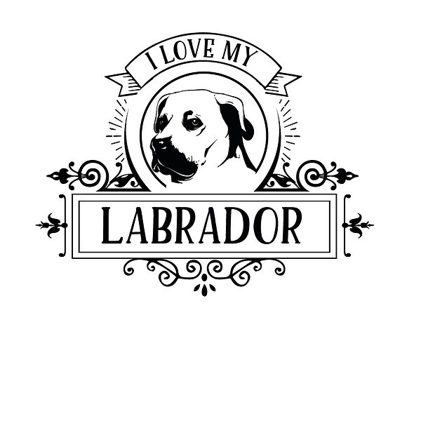I love my labrador    Png | Free Iron on Transfer Slay & Silly Quotes T- Shirt Design in Png