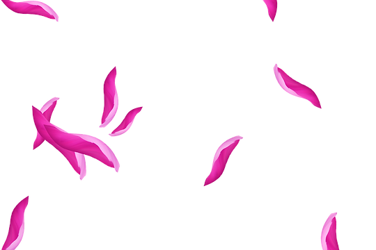 Stunning Flying Rose Petals | Photo Overlays | Free