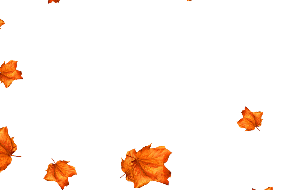 Falling leaves Photo Overlays | Glorious autumn leaves transparent background