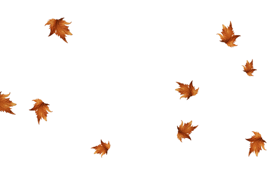 Falling leaves Photo Overlay | Wonderful autumn leaves transparent background