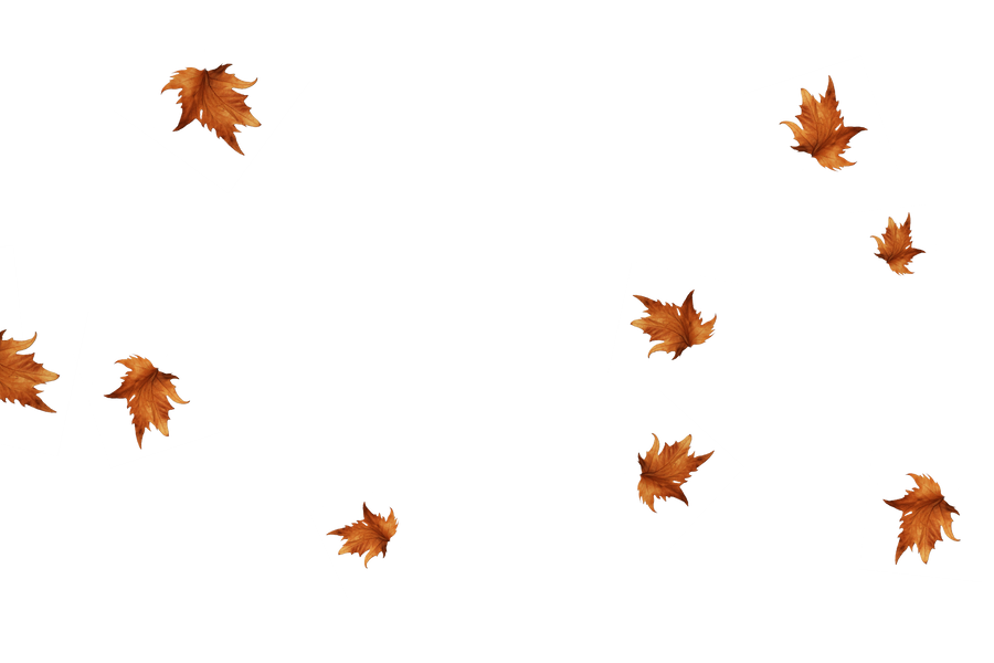 Falling leaves Photo Overlay | Wonderful autumn leaves transparent background