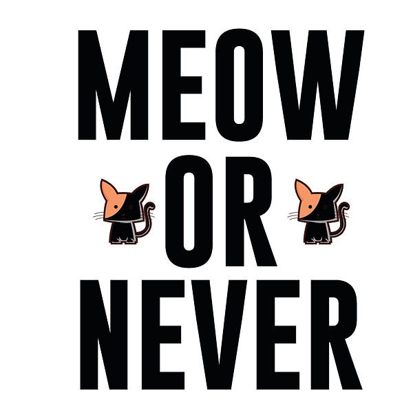 Meow or never | Free download Printable Funny Quotes T- Shirt Design in Png