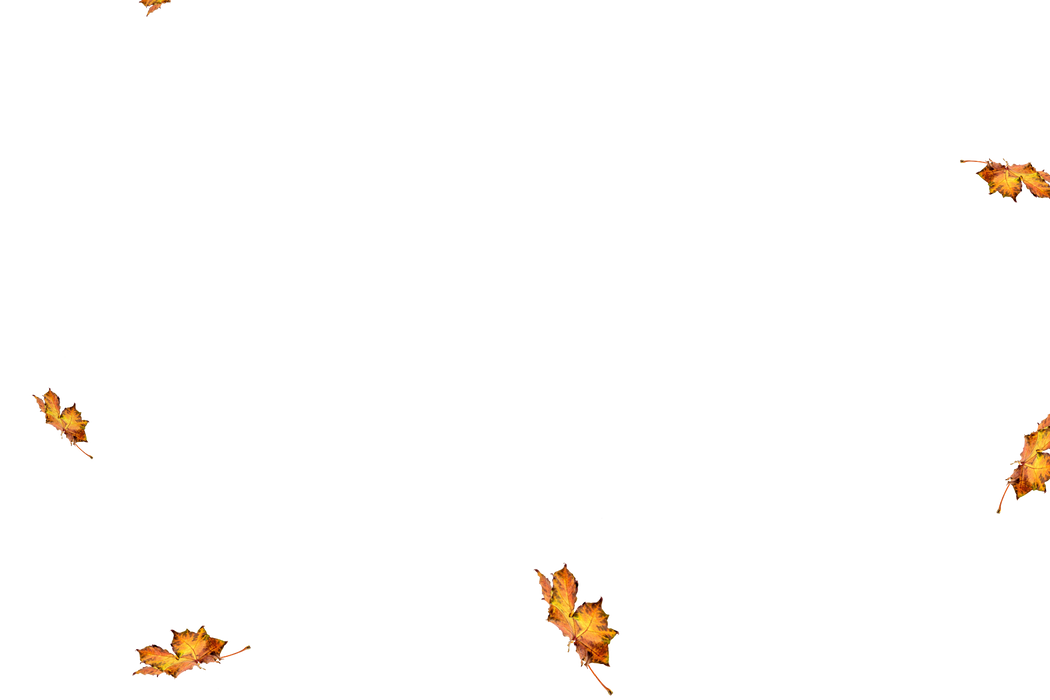 Falling leaves Overlays for Photoshop   Awesome autumn leaves transparent background