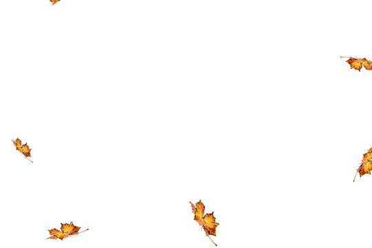 Falling leaves Overlays for Photoshop | Awesome autumn leaves transparent background