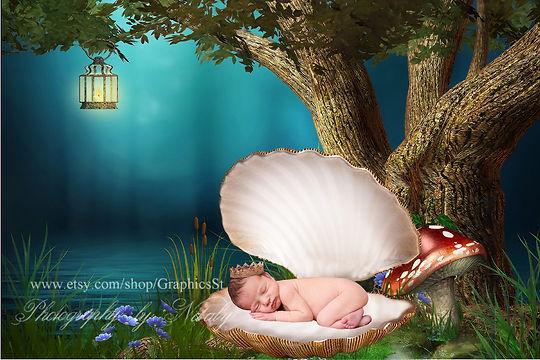 Beautiful Newborn Digital Backdrop | Newborn photography