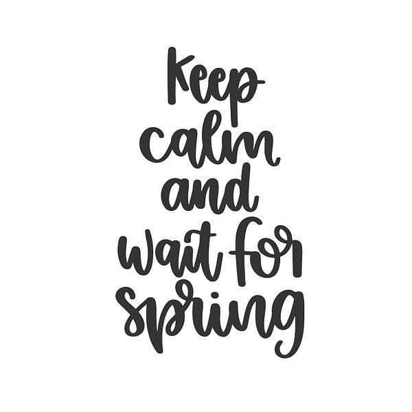 Keep calm and wait for spring Png | Free download Printable Sarcastic Quotes T- Shirt Design in Png