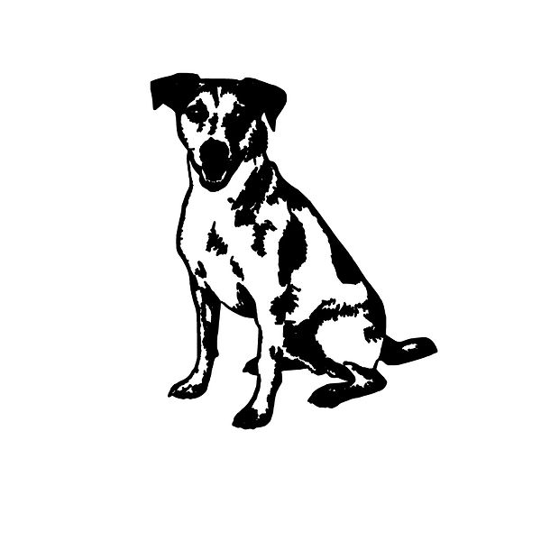 Jack russell Png | Free download Iron on Transfer Sarcastic Quotes T- Shirt Design in Png