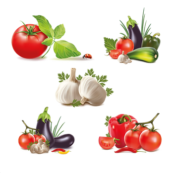 Eggplant Garlic & Tomato | Food clipart free download -size 2400x2400 300ppi
