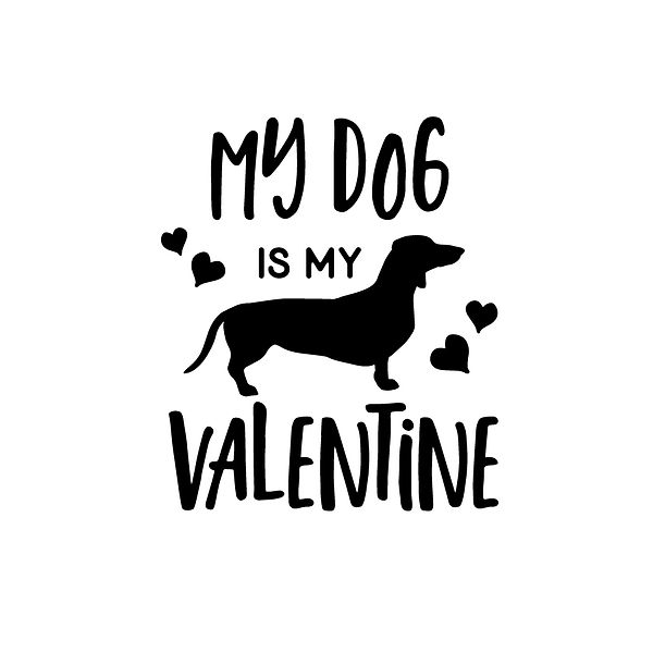 My dog is my valentine Png   Free download Iron on Transfer Funny Quotes T- Shirt Design in Png