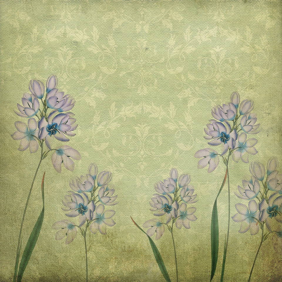 Spring floral digital paper with peonies | Partterned Digital Paper