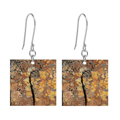 Lichen X Earrings