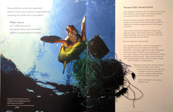 Interior_spread-Marine_Conservation_Institute_©terrinakamura-sm