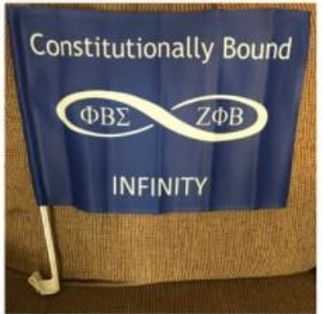 infinite flag.JPG
