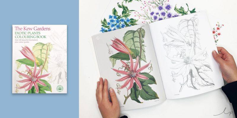 Kew Gardens Colouring Book