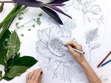 The Key to A Pro-Looking Line Drawing