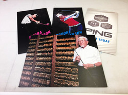 Ping Posters