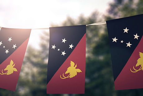 Papua New Guinea flag pennants_edited.jpg