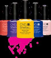 product-cndshellac-largeset.png