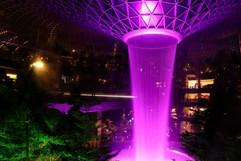 PurpleJewel.jpg