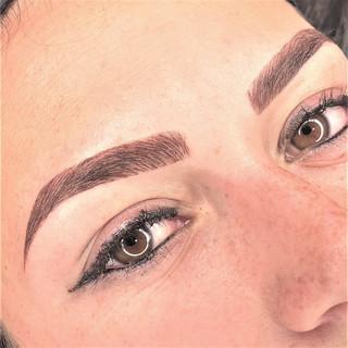 Micropigmentacion de cejas Facialtec