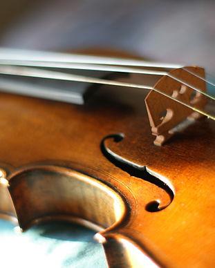 violino de Maggini