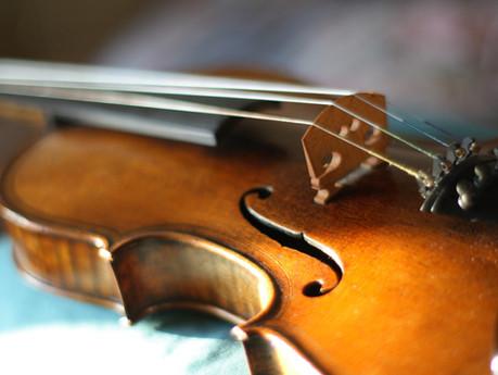 Fiddle life