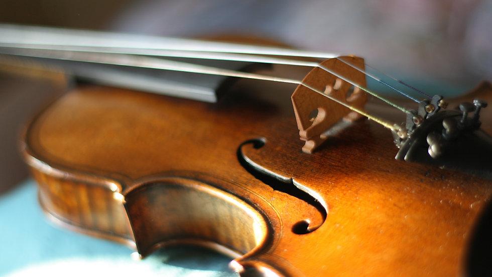 Rental Instrument