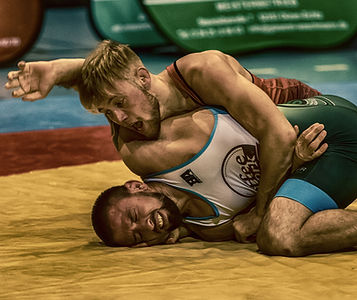 wrestle-3724560.jpg