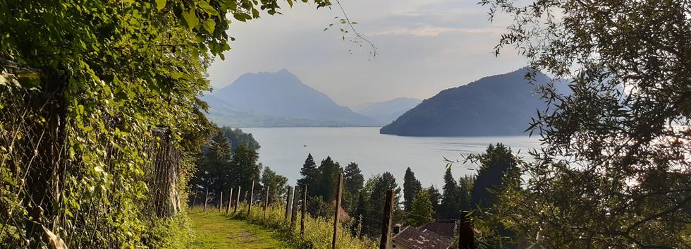 Camping Vitznau 2020