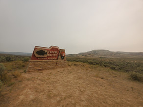 Wandering WY: Fossil Butte National Monument