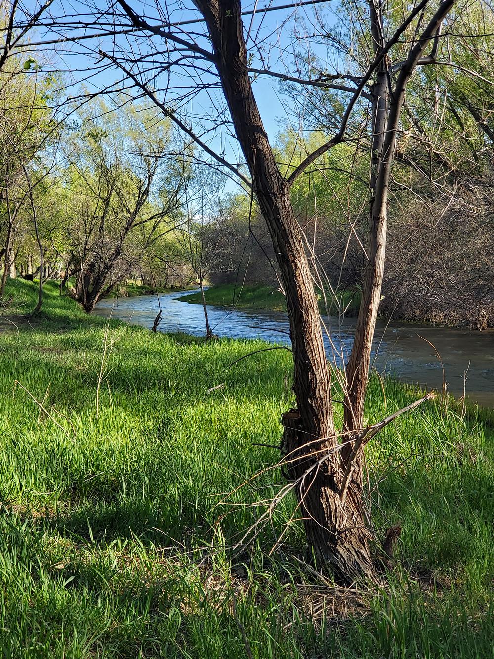 Deer Creek, Glenrock Wyoming, Wyoming