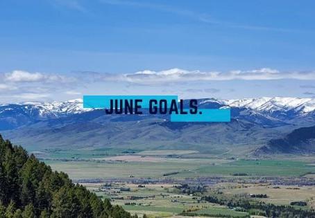 lilmissbearpaw June Goals