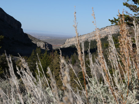 Wandering Wyoming: The Sinks Canyon Nature Trail