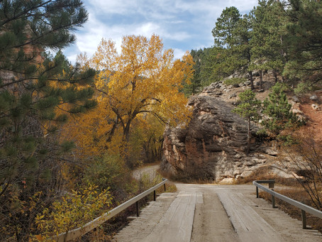 Wandering WY: Crazy Woman Canyon
