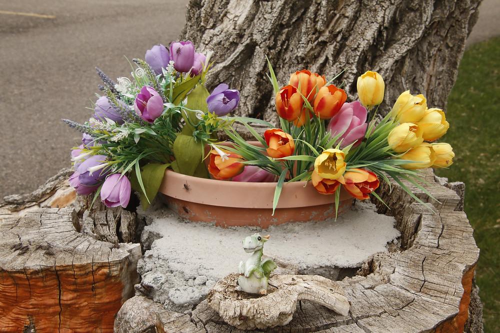 multi-colored tulips, dragon miniature
