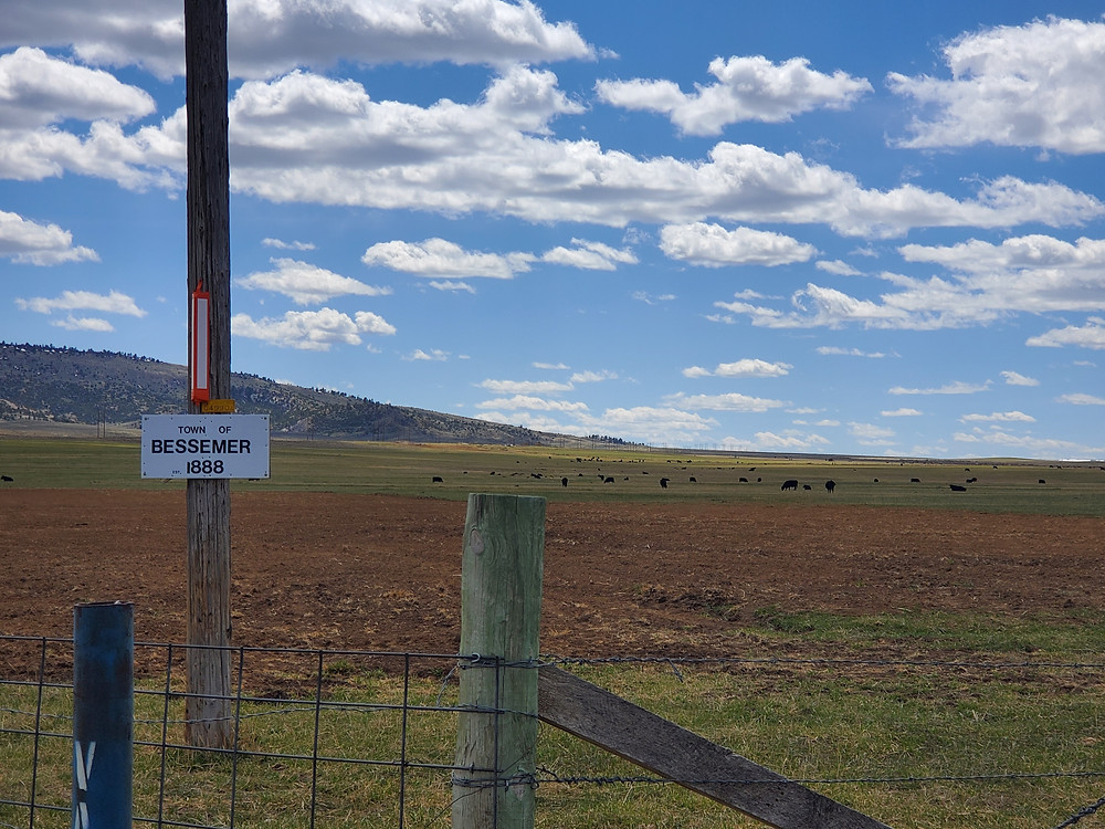 Bessemer Townsite, Cows, Ranch, Wyoming