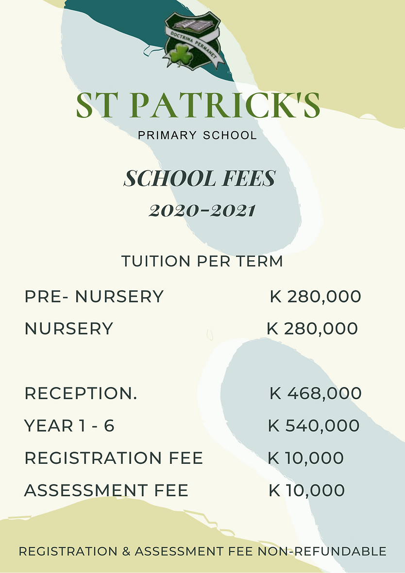 PRIMARY FEES.png
