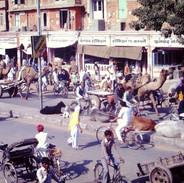 Jaipur - Rajasthan - Indien