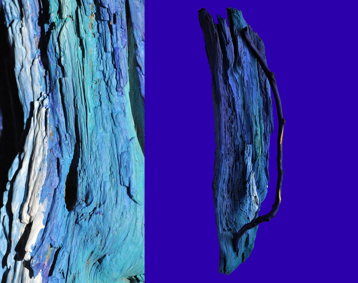 fotobuch blau mit zweig 1.jpg