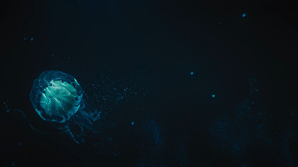 Percy_Jackson_Sea_of_Monsters_01_10000.m